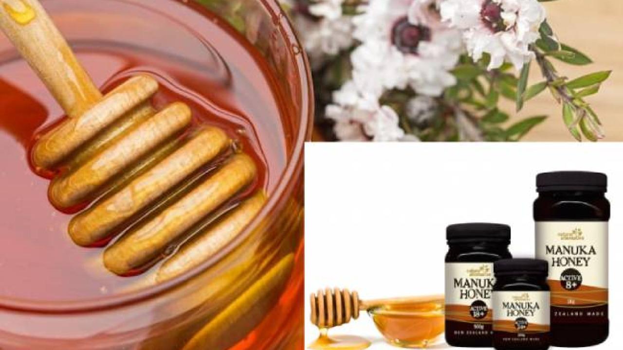 Giải mã: Mật ong Manuka có gì tốt mà lại được ưa chuộng?