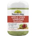 Nature's Way Apple Cider Vinegar Gummies 65 pack