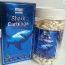 costar shark cartilage 750mg 365 capsules-